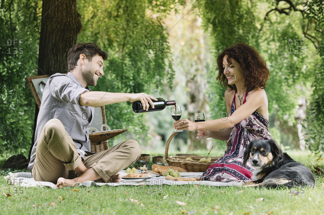 Couple with dog having a picnic in a park drinking red wine