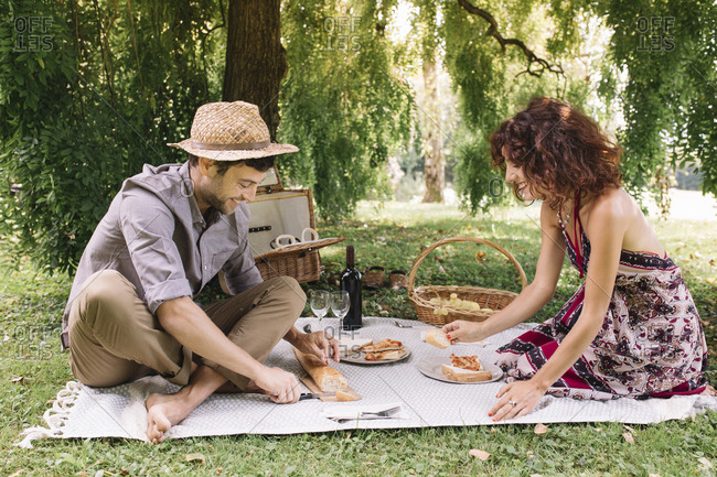 Happy couple having a picnic in a park