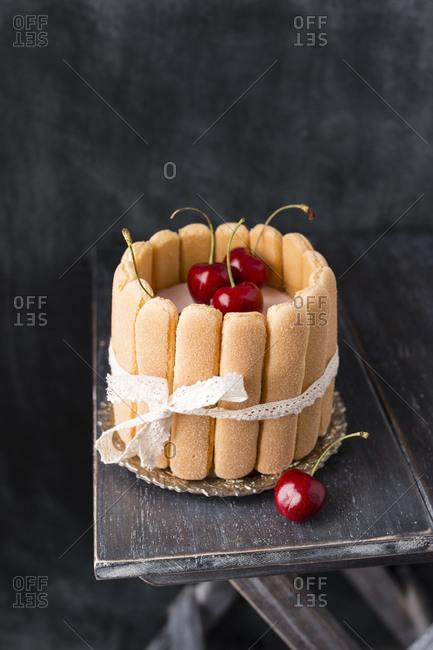 Homemade cherry cake with ladyfingers