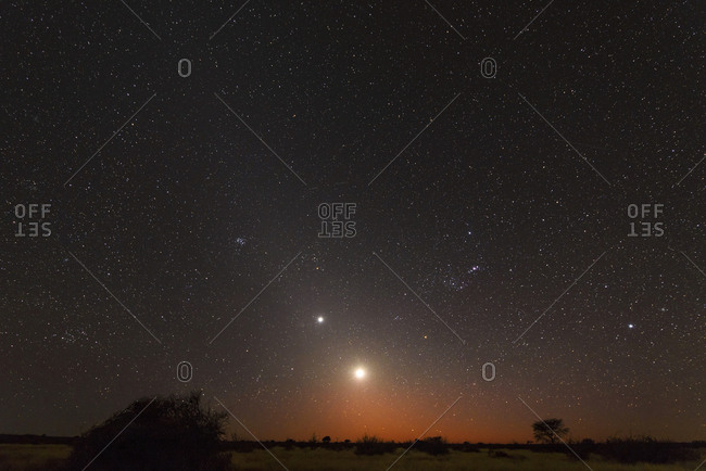 Namibia- Region Khomas- near Uhlenhorst- Astrophoto- Rising moon and Planet Venus embedded in glowing Zodiacal Light during dawn- constellation Orion upside down