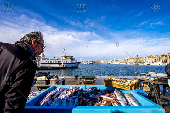 Marseille, France - March 6, 2017: Fish seller at the fish market at the old port, Vieux Port, Marseille, Bouches-du-Rhone, Provence-Alpes-Cote d'Azur, Southern France