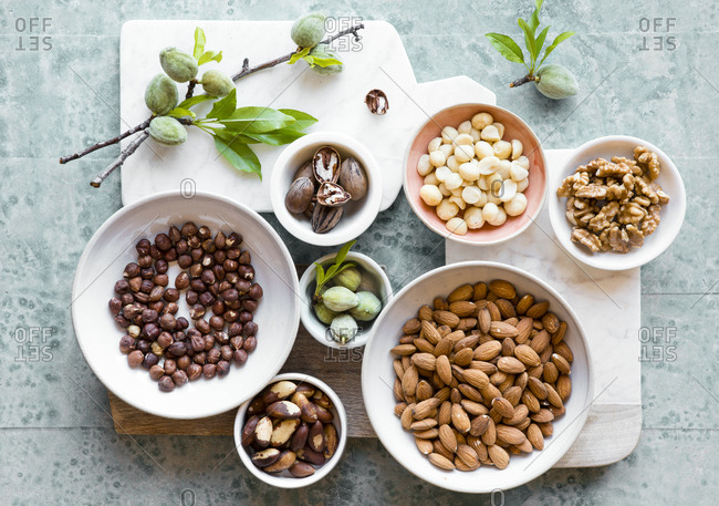 Variety of nuts - Offset Collection