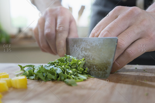 Man cutting mangold leaf vegetable on wooden board