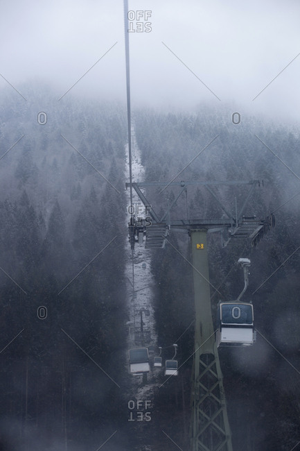 Overhead cable car above snow covered trees in forest