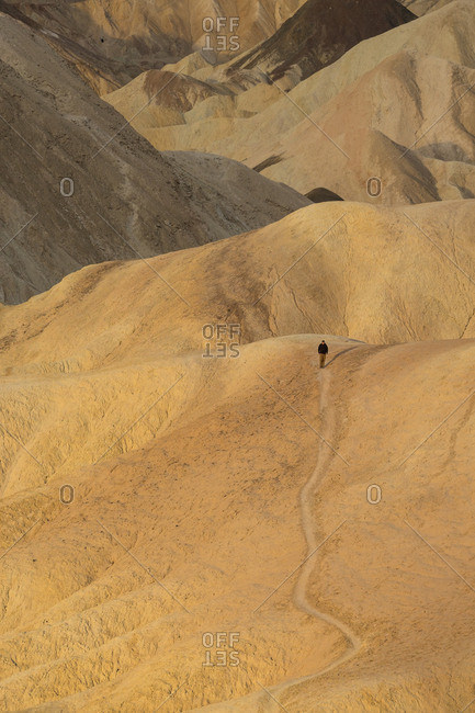Death Valley, Death Valley National Park, California, United States of America - March 5, 2016: Tourist exploring the canyons near Zabriskie Point in Death Valley National Park