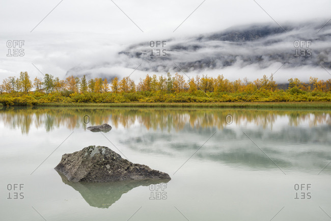 Autumn landscape with colorful mountain birch forest and river of glacier meltwater