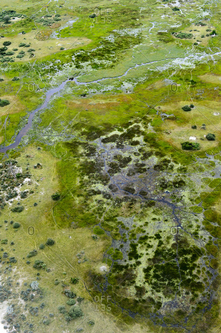 An aerial view of the Okavango Delta and tributary streams