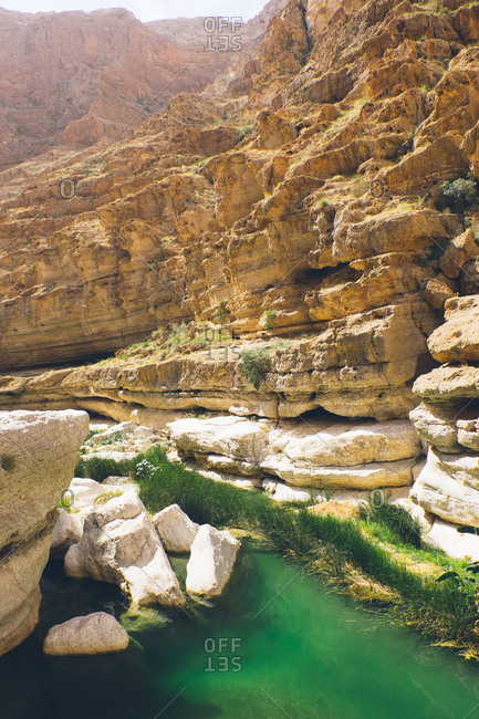 Green river in the canyons of Wadi Shab, Oman