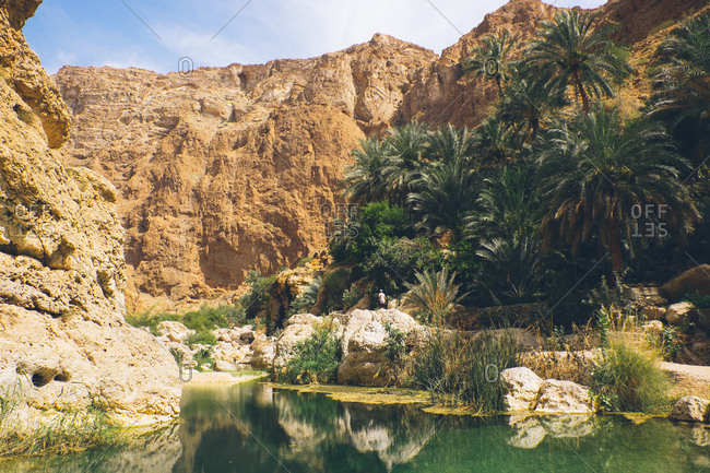 Natural pool and palm trees in the canyons of Wadi Shab, Oman
