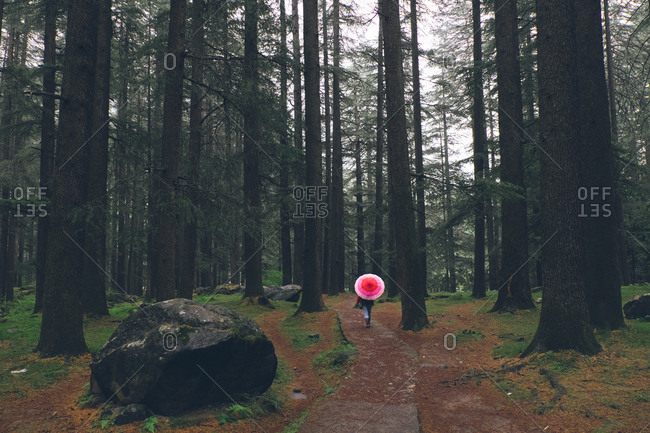 Woman walking with pink umbrella, Manali, Himachal Pradesh, India
