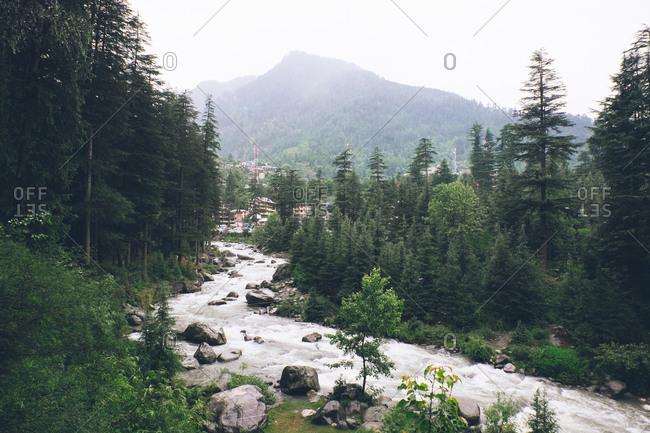 Beas River, Manali, Himachal Pradesh, India