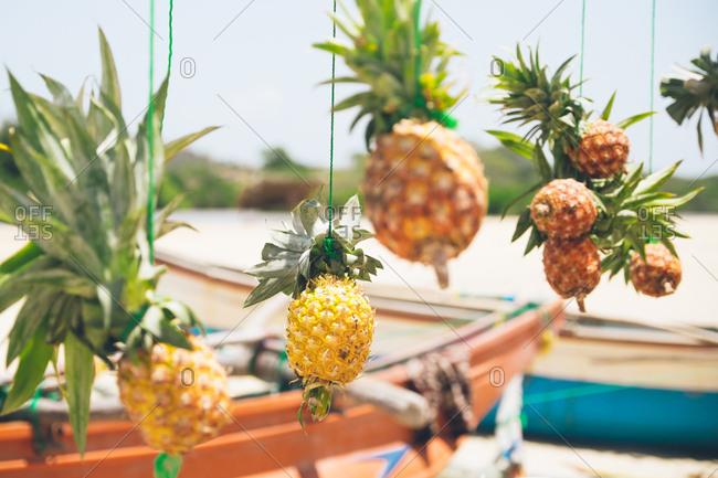 Pineapples hanging on strings