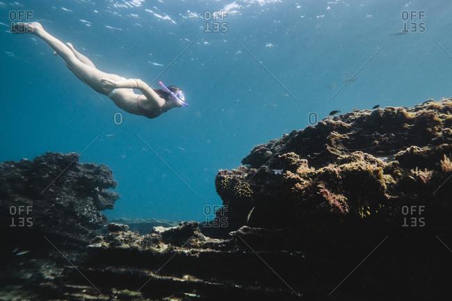 Side view of woman scuba diving undersea