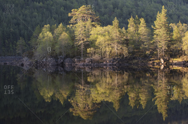 Dawn reflections in Loch Beinn at Mheadhoin. Glen Affric, Wester Ross, Highlands, Scotland, UK, May 2011