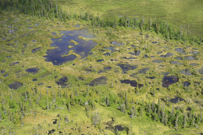 Aerial view of peat bogs and taiga boreal forest, Sjaunja Bird Protection Area, Greater Laponia Rewilding Area, Lapland, Norrbotten, Sweden, June 2013