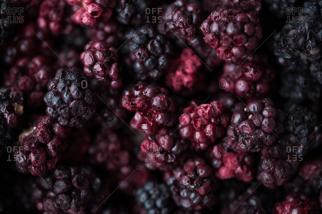 Full frame shot of blackberry fruit