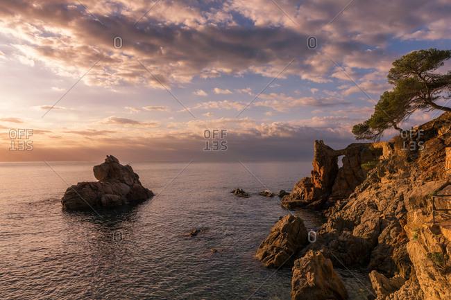 Rocky coast landscape