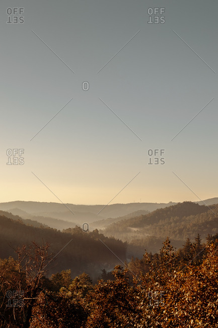 Landscape of Valley with fog