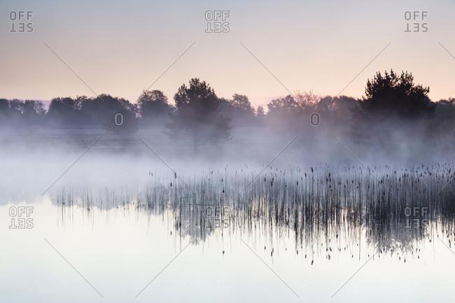 Morning Fog on Lake at Dawn in former Altenrath, Troidorf, Rhein-Sieg-Kreis, North Rhine-Westphalia, Germany