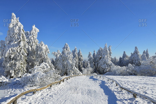 Snow Covered Winter Landscape with Path, Grosser Feldberg, Frankfurt, Taunus, Hesse, Germany