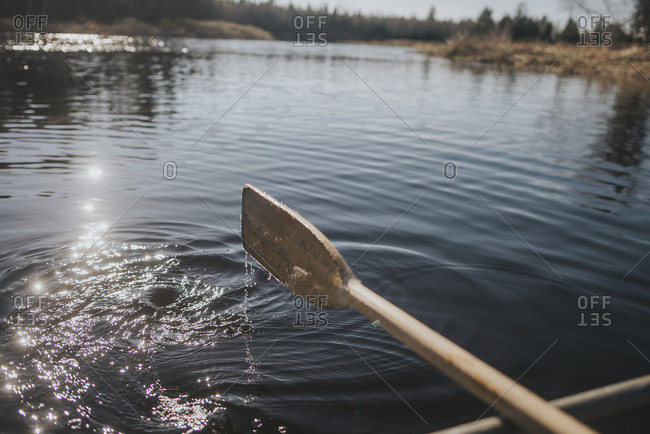 Wooden oar coming up out of the water