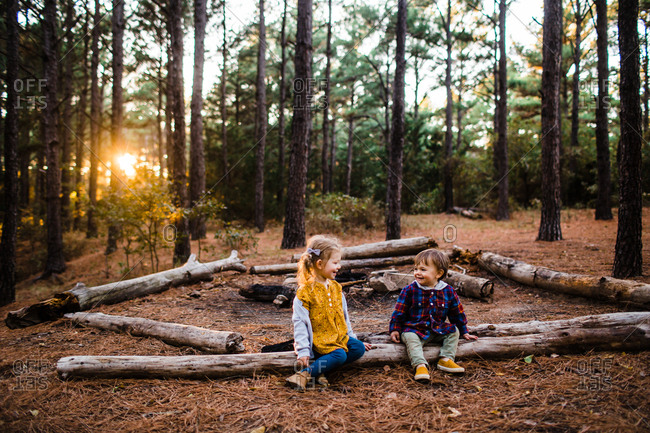 Brother and sister sitting on fallen tree in a forest in autumn