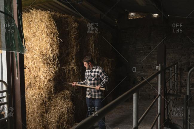 Farmer working in barn