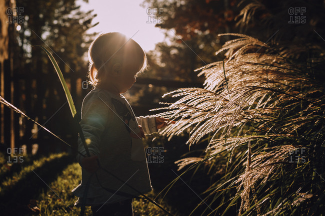 Little girl exploring at sunset