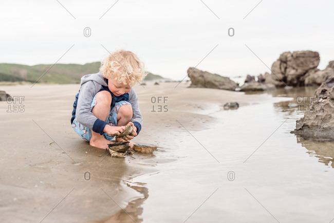 Young boy cleaning sea shells at the beach