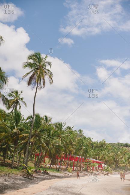 Palm trees and tropical sandy beach at Prainha de Itacare