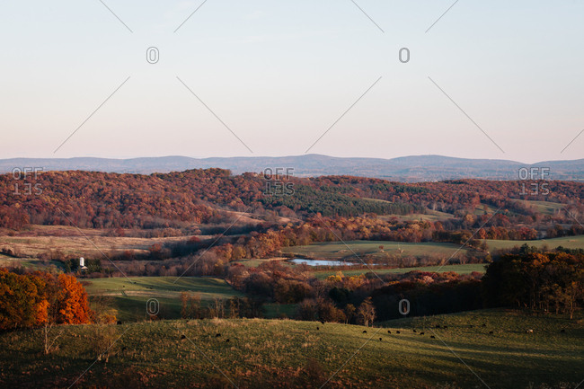 Rural field during filled with colorful trees