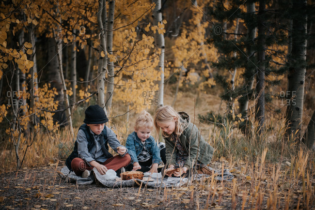 Three kids having a picnic in the forest in autumn