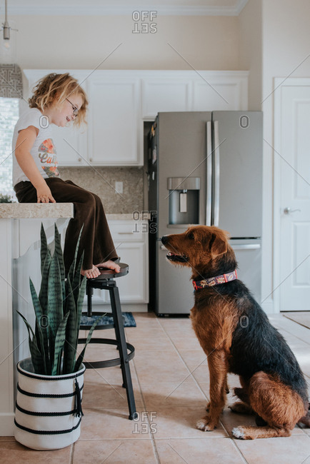 Little girl sitting on kitchen counter staring at dog