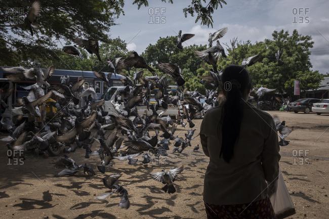 Bagan, Myanmar - September 26, 2016: Woman feeding a flock of pigeons in the streets of Bagan