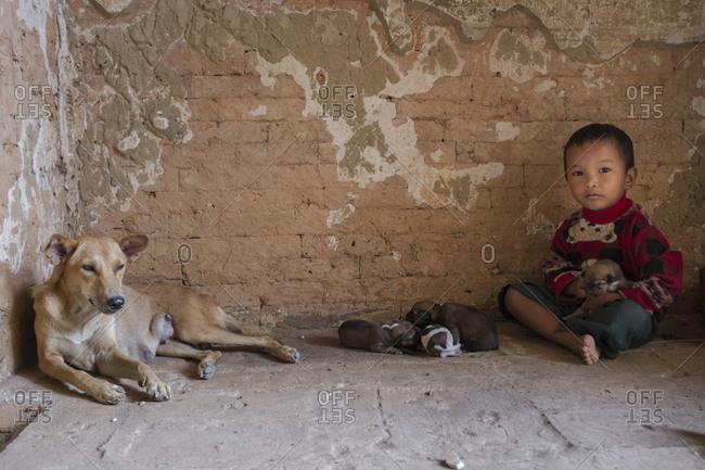 Bagan, Myanmar - September 27, 2016: Child with puppies at Dhammayangyi Pahto