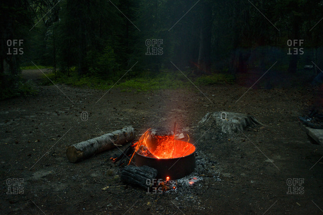 Close-up of campfire burning at campsite in forest