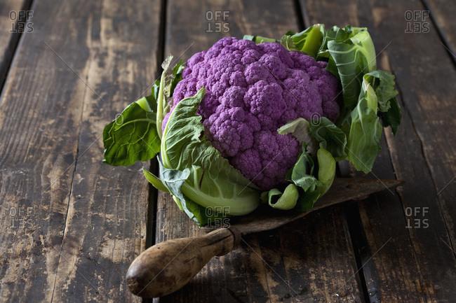 Purple cauliflower and old knife on wood