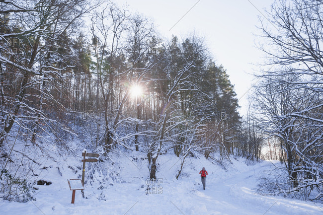 Germany- North Rhine-Westphalia- Eifel National Park- man hiking in snow-covered landscape