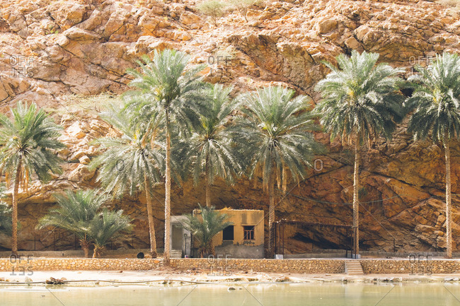 Small house and palm trees at base of canyon along river at Wadi Shab