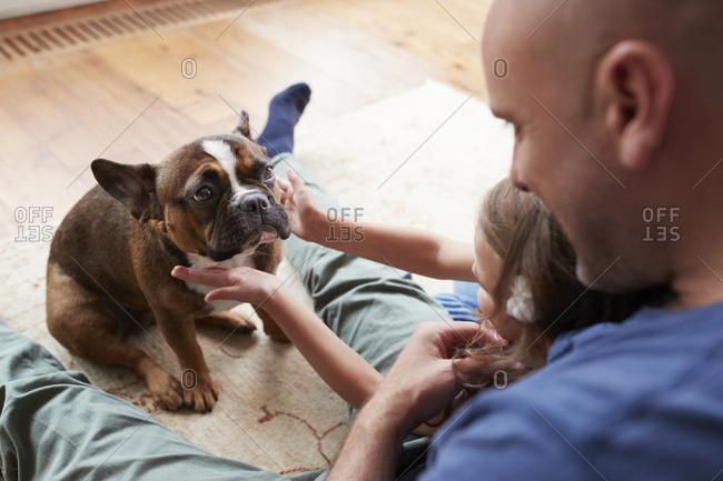 Young girl with dad, petting dog at home, over shoulder view
