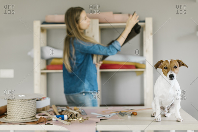Dog sitting on table with leather crafting items as woman selects material