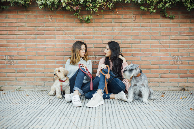 Two young women sitting together with their pet dogs