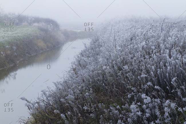 France, Les Moutiers-en-Retz, countryside covered with white frost.