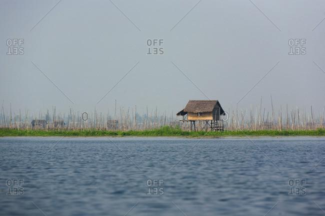 Stilts house on tomato plantations, itself surrounded by Inle lake, Nyaung Shwe, Burma