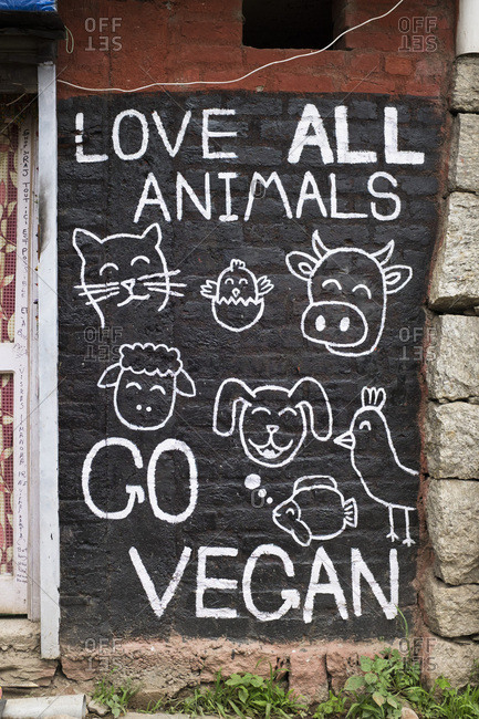 May 9, 2017: Mural painting pronouncing veganism by the extremist go vegan movement, Dharamkot, Dharamsala, India