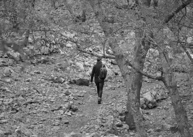 Woman walking through forest alone in black and white