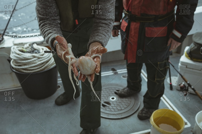 Close-up of fisherman holding octopus in boat