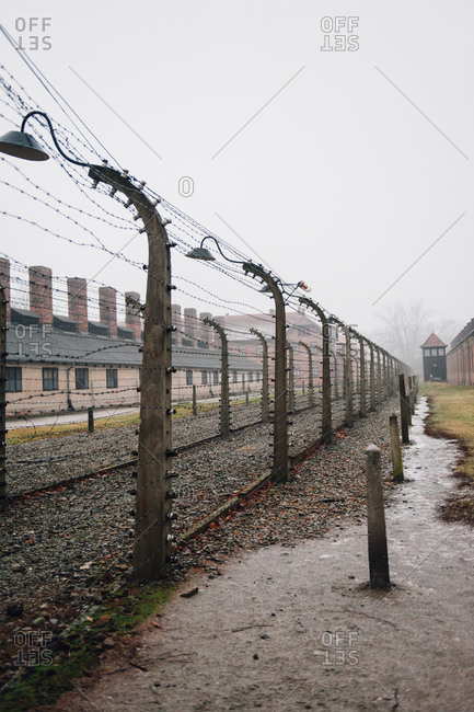 Barbed wire fences at Auschwitz-Birkenau