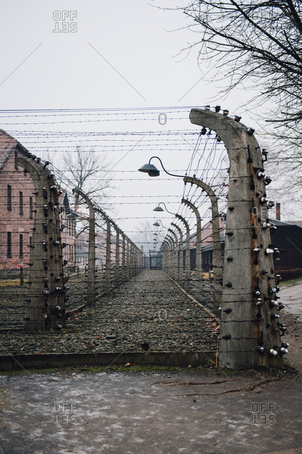 Barbed wire fences and lamp posts at Auschwitz-Birkenau