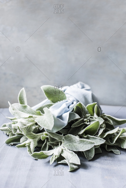 Bouquet of leaves lying on the table
